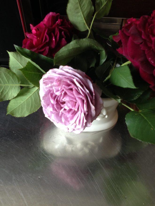 rosen-vase